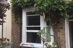 Downstairs sash window with wisteria